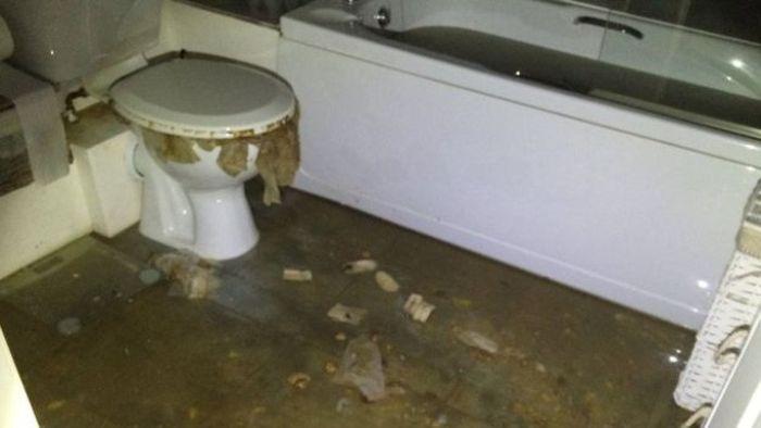 Chiêm bao thấy thấy nhà vệ sinh ngập nước là cát mộng nên bạn không cần phải lo lắng